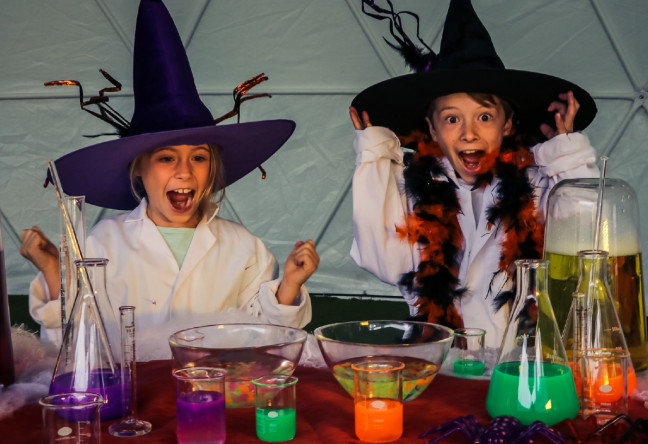 Things to do in County Wicklow, Ireland - A Frightfully Fang-Tastic Lab Experience - YourDaysOut