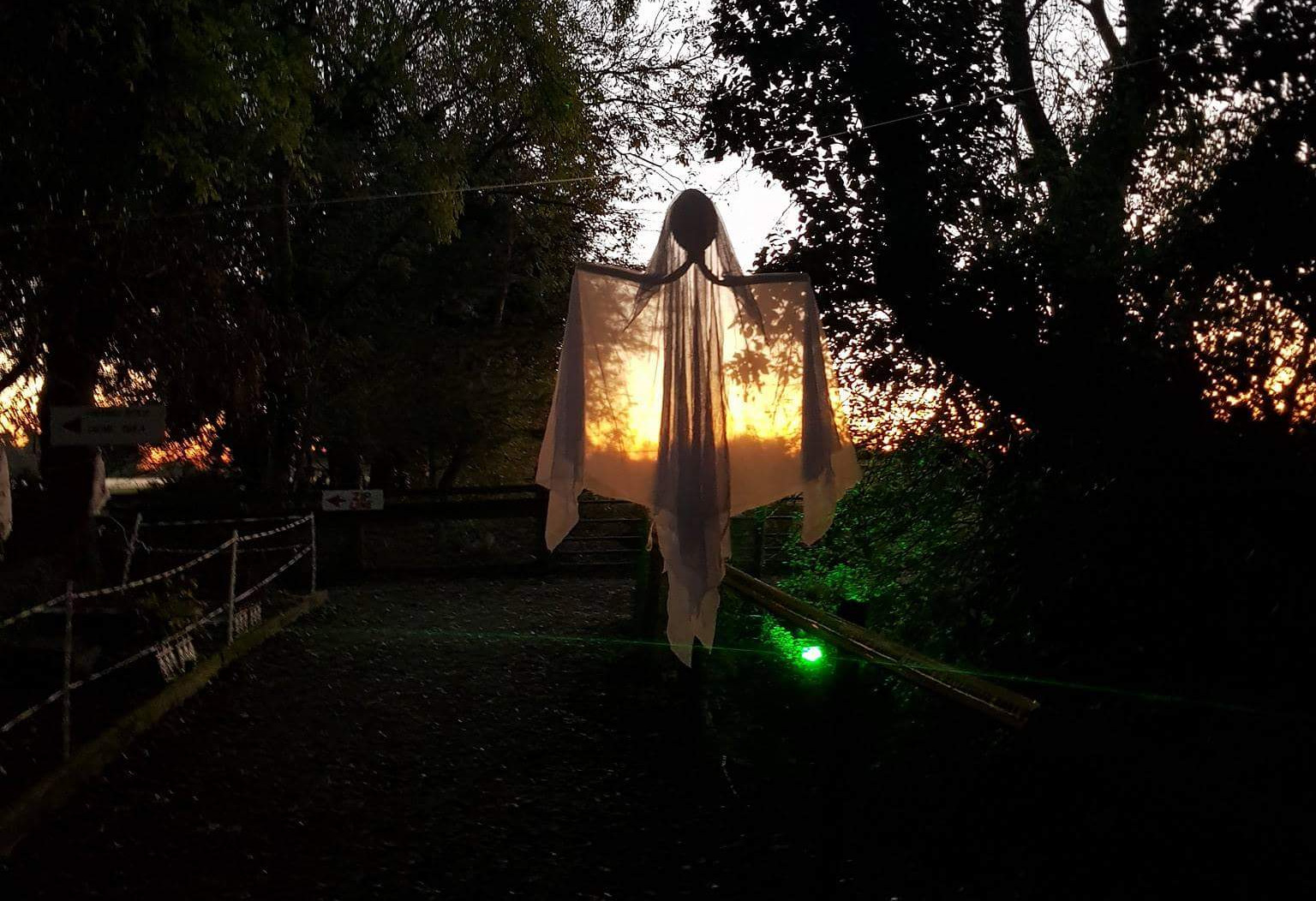 Things to do in County Kildare, Ireland - Halloween Festival |  Clonfert Pet Farm - YourDaysOut - Photo 2