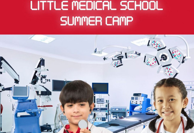 Things to do in County Wexford, Ireland - Little Medical School Summer Camp - YourDaysOut