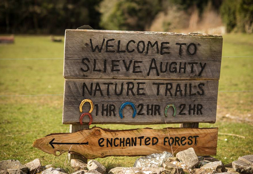 Things to do in County Galway, Ireland - Slieve Aughty Centre - YourDaysOut - Photo 3