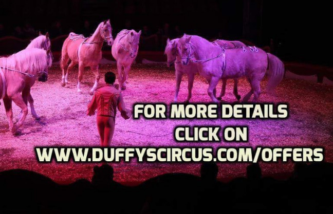Things to do in Northern Ireland Larne, United Kingdom - Duffy's circus Larne - YourDaysOut