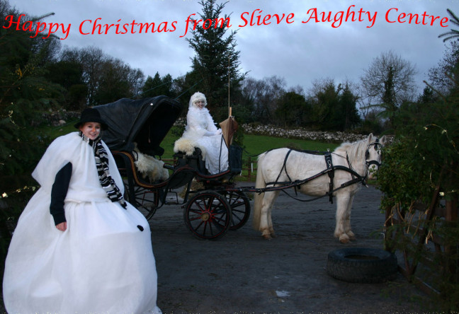 Things to do in County Galway, Ireland - An Enchanted Christmas | Slieve Aughty - YourDaysOut