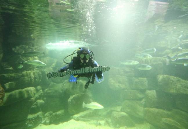 Things to do in County Galway, Ireland - Galway Atlantaquaria - Join us for BIG family events like World Oceans Day, Halloween and Culture Night. - YourDaysOut - Photo 3