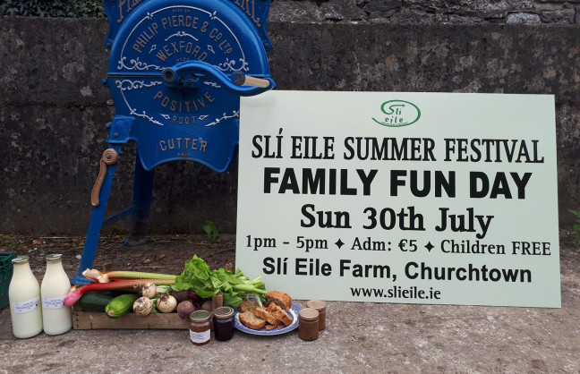 Things to do in County Cork, Ireland - Sli Eile Summer Festival - YourDaysOut