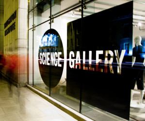 Things to do in County Dublin, Ireland - Science Gallery - YourDaysOut