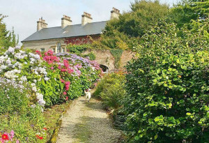 Things to do in County Donegal, Ireland - Dunmore Gardens - YourDaysOut