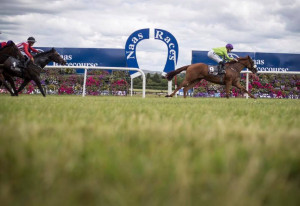 Things to do in County Kildare, Ireland - Naas Racecourse - YourDaysOut