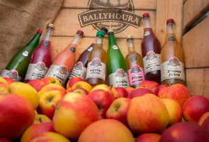 Things to do in County Limerick, Ireland - Ballyhoura Apple Farm - YourDaysOut