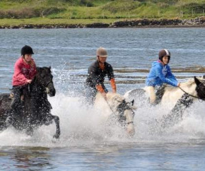 Things to do in County Mayo, Ireland - Carrowholly Stables - YourDaysOut