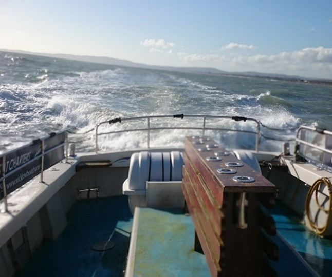 Things to do in County Wicklow, Ireland - Wicklow Boat Charters - YourDaysOut